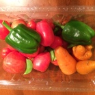 carrots, toms and peppers